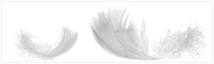 Umplutura naturala VS umplutura sintetica blog LUISS.RO